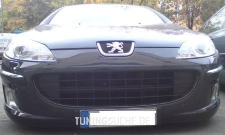 Peugeot 407 (6D) 2.2 Platinum Bild 337801