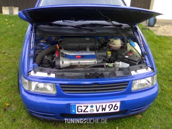 VW POLO (6N1) 09-1998 von Polo-Seele - Bild 338345
