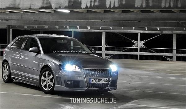 Audi A3 (8P1) 03-2005 von Oscar81 - Bild 347192