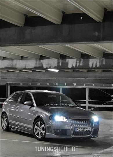 Audi A3 (8P1) 03-2005 von Oscar81 - Bild 347193