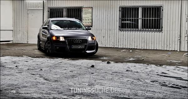 Audi A3 (8P1) 03-2005 von Oscar81 - Bild 347197