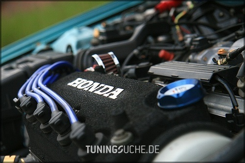 Honda CIVIC V Hatchback (EJ9, EK1/3/4) 00-1999 von blauer - Bild 425266
