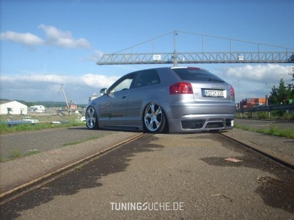 Audi A3 (8P1) 03-2005 von Oscar81 - Bild 433787