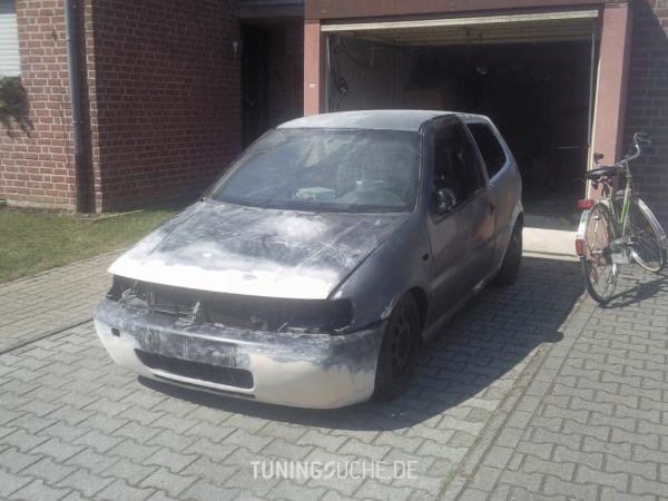 VW POLO (6N1) 09-1998 von BjoernGTI - Bild 459686