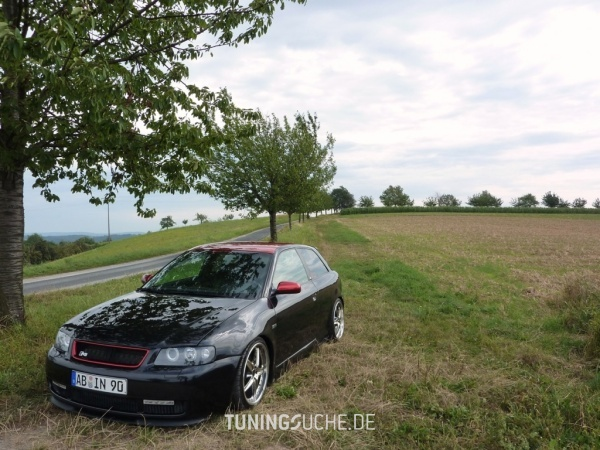 Audi A3 (8L1) 03-1998 von A3-Driver-90 - Bild 468398