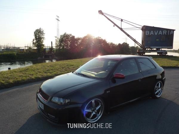 Audi A3 (8L1) 03-1998 von A3-Driver-90 - Bild 468413