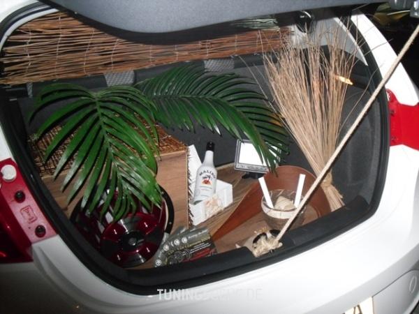 Seat LEON (1P1) 01-2009 von Paz - Bild 468792