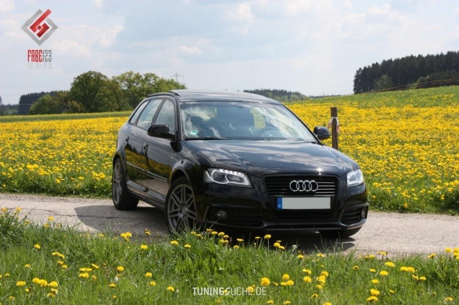 Audi A3 (8P1) 2.0 TFSI S line Bild 476656