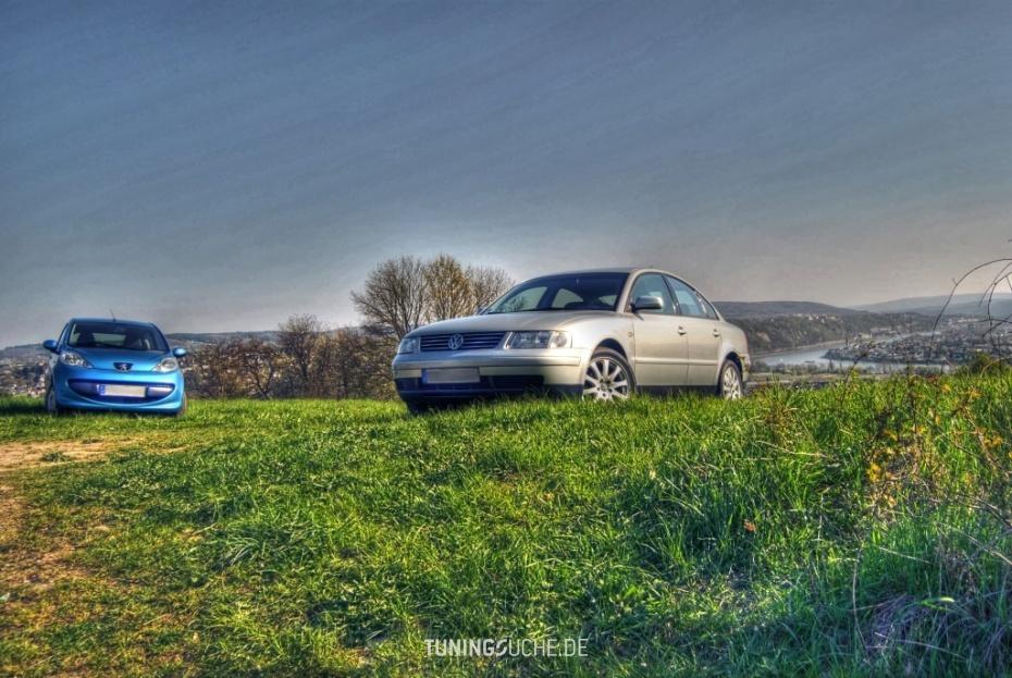 VW PASSAT (3B2) 1.6 Comfortline Bild 508754