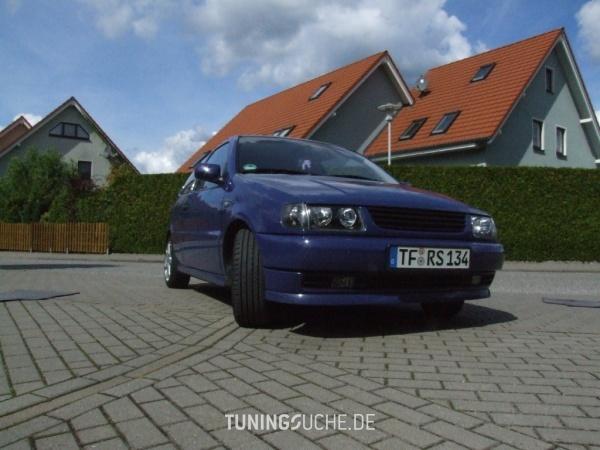 VW POLO (6N1) 05-1995 von AalBert - Bild 559291