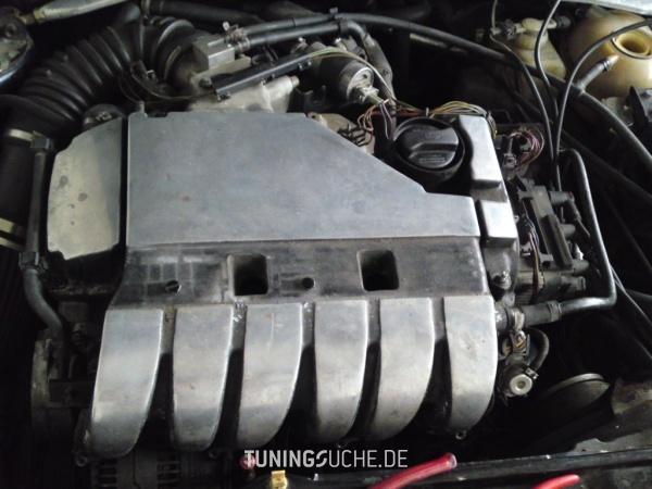 VW GOLF III (1H1) 11-1995 von TG-Tuning - Bild 583782
