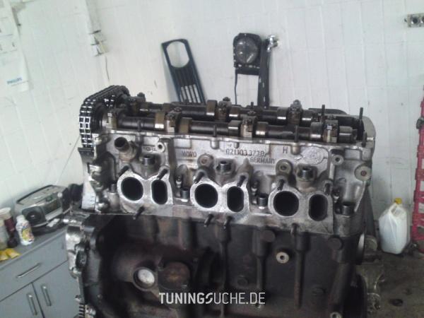 VW GOLF III (1H1) 11-1995 von TG-Tuning - Bild 583819