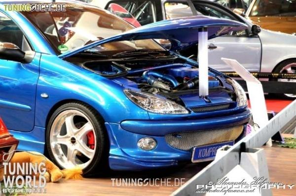Peugeot 206 CC (2D) 03-2002 von Blaukompressor - Bild 590392