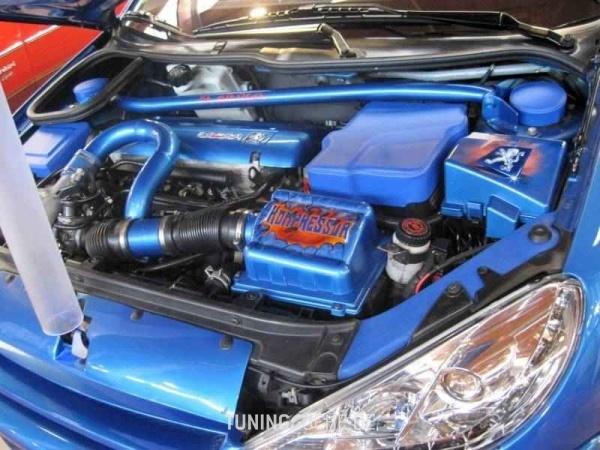 Peugeot 206 CC (2D) 03-2002 von Blaukompressor - Bild 590628