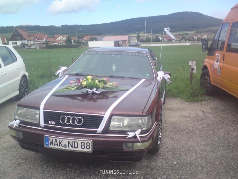 Audi V8 (44, 4C) 4.2  quattro exclusiv Bild 664323