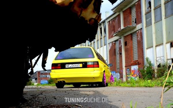 VW PASSAT (3A2, 35I) 06-1992 von SchlingSchlang - Bild 735851