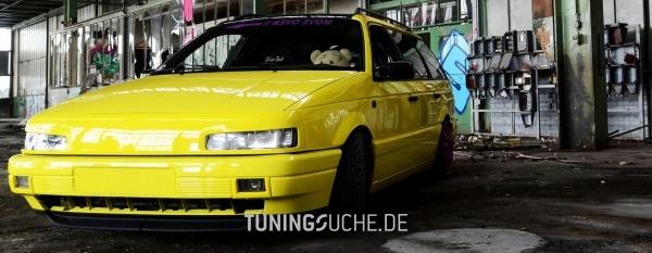 VW PASSAT (3A2, 35I) 06-1992 von SchlingSchlang - Bild 736031