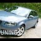 Audi A3 (8P1) 2.0 TDI quattro  Bild 794066