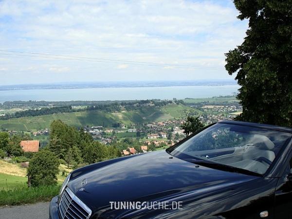 Mercedes Benz CLK (C208) 01-2000 von roan - Bild 65538