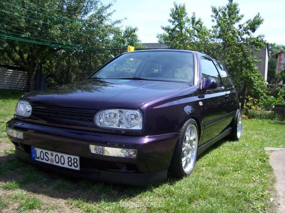 VW GOLF III (1H1) 1.6 Golf 3 GT Special Bild 78696