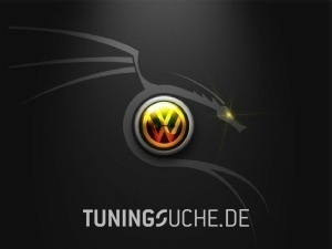 VW GOLF IV (1J1) 01-2002 von Tracid - Bild 81473