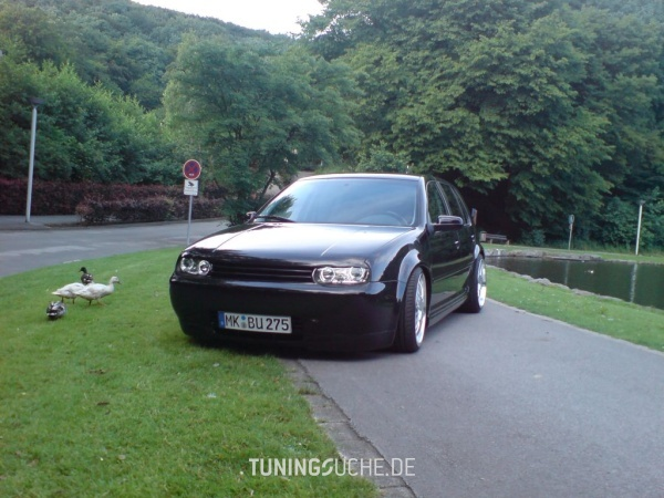 VW GOLF IV (1J1) 01-2000 von Wallimann - Bild 81997
