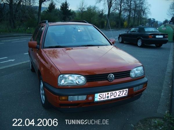 VW GOLF III Variant (1H5) 08-1996 von Bodychecker - Bild 87833