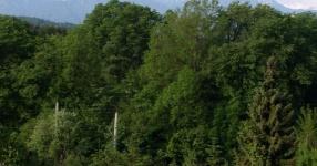 Wörtherseetour 2008 Bayernfraktion  Rund um den Wörthersee bwz auf der Fahrt von uns daheim an den See..  Rich Bitch, Seetour, Schocki, Vaater,l Wörthersee 2008  Bild 121700
