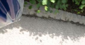 Wörtherseetour 2008 Bayernfraktion  Rund um den Wörthersee bwz auf der Fahrt von uns daheim an den See..  Rich Bitch, Seetour, Schocki, Vaater,l Wörthersee 2008  Bild 122180