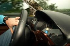 Wörtherseetour 2008 Bayernfraktion  Rund um den Wörthersee bwz auf der Fahrt von uns daheim an den See..  Rich Bitch, Seetour, Schocki, Vaater,l Wörthersee 2008  Bild 122288