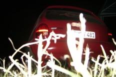 13 opeltreffen oschersleben oscherleben treffen.oschersleben 2008  Bild 126803