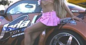 Car-Girls hir und da Frauen, autos,   Bild 157035