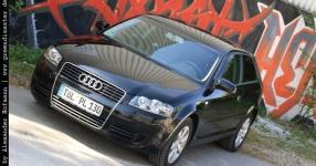 Carshooting: Paul's Audi A3 8P verrat ich nicht Carshooting Paul Audi A3 8P  Bild 376304