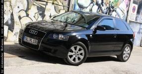 Carshooting: Paul's Audi A3 8P verrat ich nicht Carshooting Paul Audi A3 8P  Bild 376317
