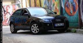 Carshooting: Paul's Audi A3 8P verrat ich nicht Carshooting Paul Audi A3 8P  Bild 376337