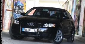Carshooting: Paul's Audi A3 8P verrat ich nicht Carshooting Paul Audi A3 8P  Bild 376343