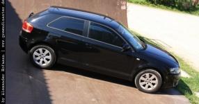 Carshooting: Paul's Audi A3 8P verrat ich nicht Carshooting Paul Audi A3 8P  Bild 376405