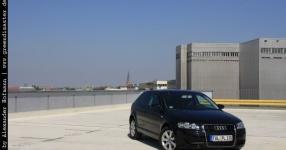 Carshooting: Paul's Audi A3 8P verrat ich nicht Carshooting Paul Audi A3 8P  Bild 376431