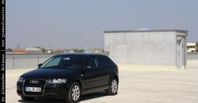 Carshooting: Paul's Audi A3 8P verrat ich nicht Carshooting Paul Audi A3 8P  Bild 376474