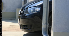 Carshooting: Paul's Audi A3 8P verrat ich nicht Carshooting Paul Audi A3 8P  Bild 376506