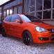 VW POLO (9N)