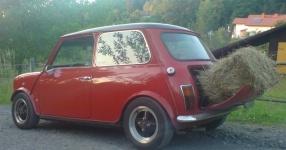 Mini 1300 01-1989 von spessartraeuber  Sonstiges, Mini, 1300  Bild 457616