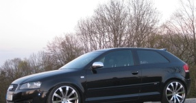 Audi A3 (8P1) 09-2004 von StepsSLINE  keine Auswahl, Audi, A3 (8P1)  Bild 495422