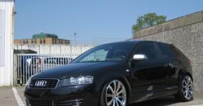 Audi A3 (8P1) 09-2004 von StepsSLINE  keine Auswahl, Audi, A3 (8P1)  Bild 515473