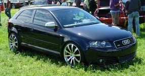 Audi A3 (8P1) 09-2004 von StepsSLINE  keine Auswahl, Audi, A3 (8P1)  Bild 537323