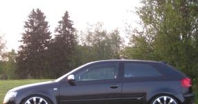 Audi A3 (8P1) 09-2004 von StepsSLINE  keine Auswahl, Audi, A3 (8P1)  Bild 587608