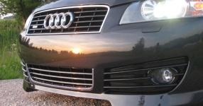 Audi A3 (8P1) 09-2004 von StepsSLINE  keine Auswahl, Audi, A3 (8P1)  Bild 587610