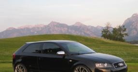 Audi A3 (8P1) 09-2004 von StepsSLINE  keine Auswahl, Audi, A3 (8P1)  Bild 587620