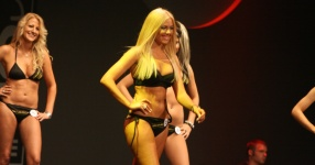 Miss Tuning 2011: Mandy ist die Gewinnerin!  Tuning World Bodensee, Friedrichshafen, Miss Tuning, 2011, Tuningworld  Bild 590741
