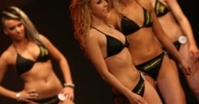Miss Tuning 2011: Mandy ist die Gewinnerin!  Tuning World Bodensee, Friedrichshafen, Miss Tuning, 2011, Tuningworld  Bild 590749